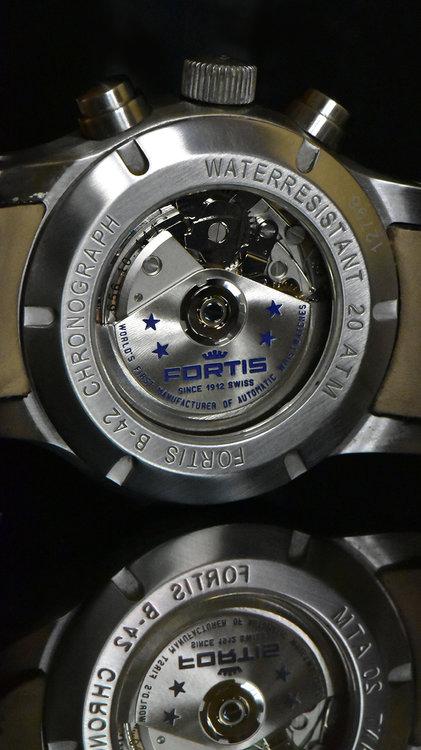 fortis3.jpg