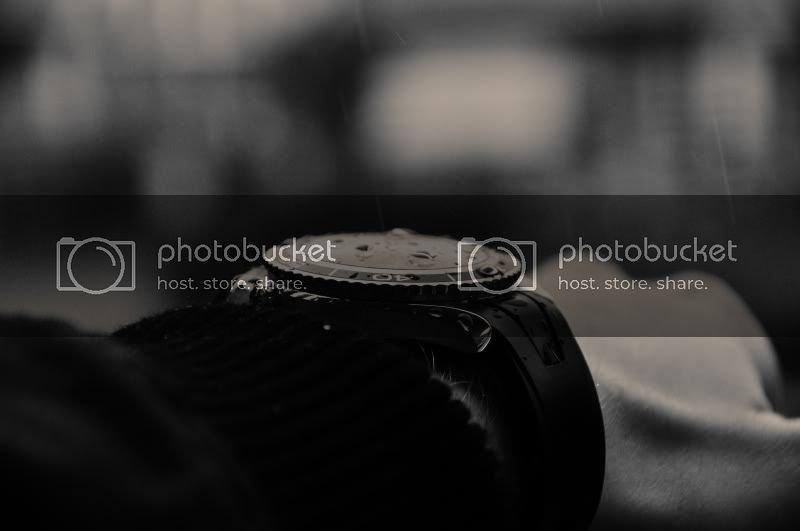 DSC_0110sss.jpg