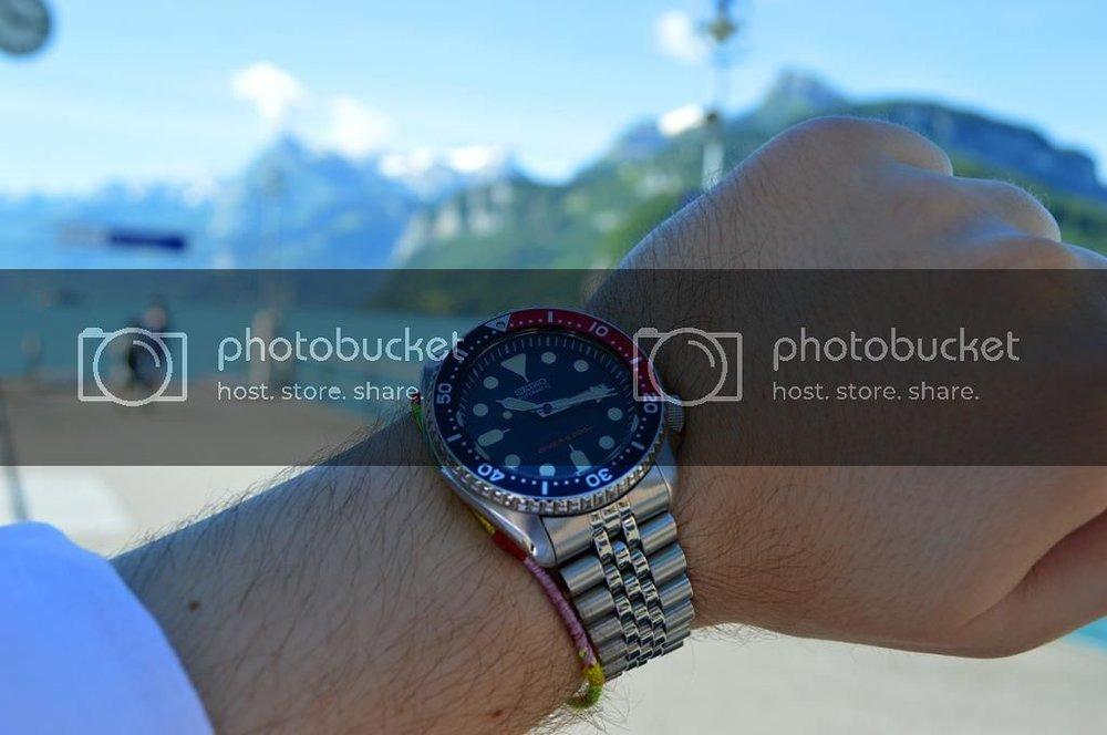 skx9_wrist_lakelucerne1.jpg