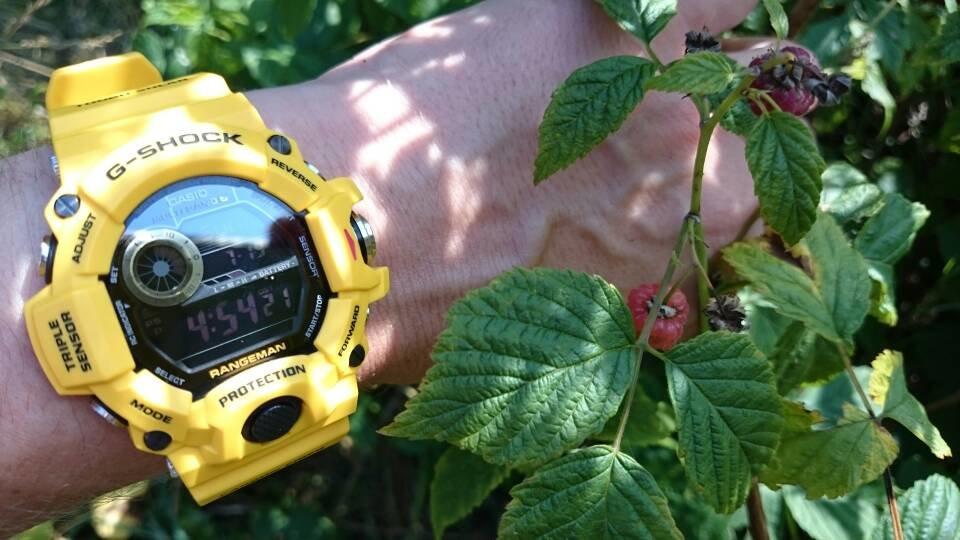 4eceae178424673006d1d0e61f49028e.jpg