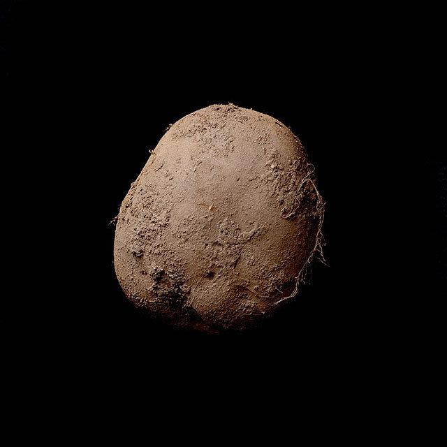 zdjecia-ziemniaka-milion-dolarow.jpg