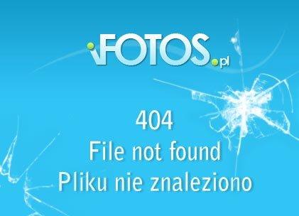 GD400-04j_wpappre.jpg