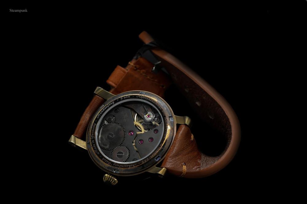 steampunk-back-schaumburgwatch.jpg