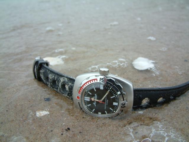 Amfibia 090916M