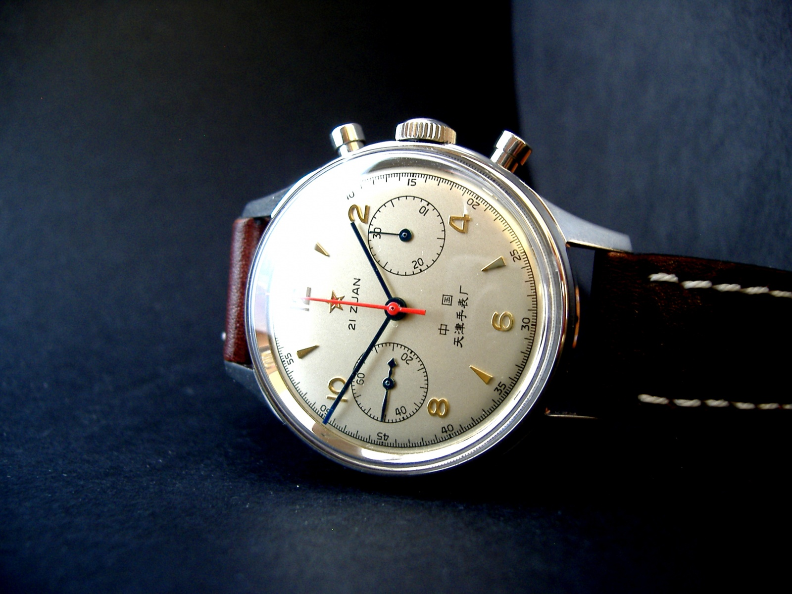 Seagull 1963 1