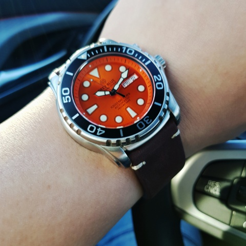 DB Sea Diver