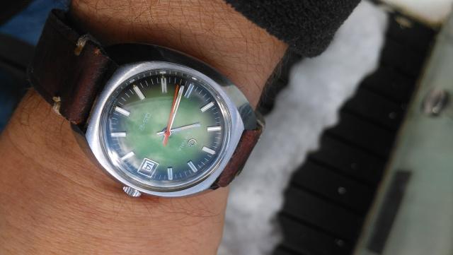 DS-2 zielony żółw_3
