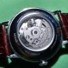 Orient RA-AP0002S10B