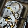 Mechanizm 15 jewels montowany w zegarkach LJUKS
