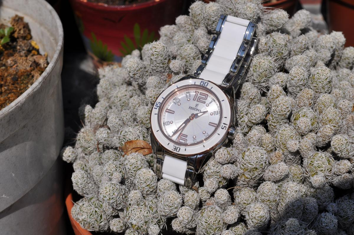 Mam zegarek online