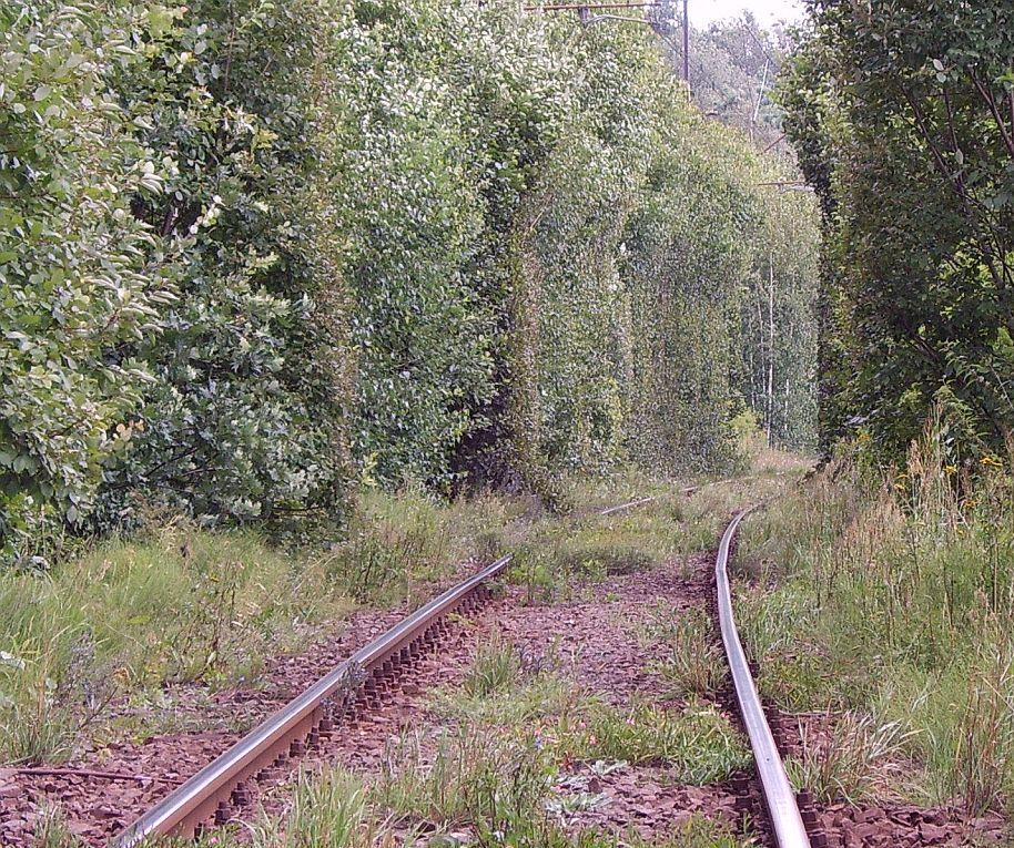 tunel1hn.jpg