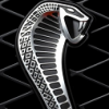 snake64